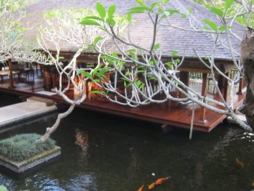 In Search of Hotel Excellence: COMO Shambala, Bali