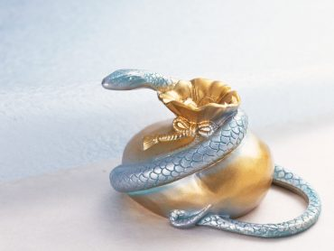 Reflecting on the Year of the Snake: What the Chinese New Year Predicts for Your Hotel