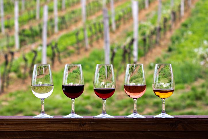 In Vino Veritas Part LXIX – Designing the Perfect Wine Tasting
